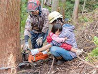 伐採体験・天板選び「家づくりも楽しみたい!」